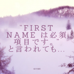 WP-Members:ユーザー登録時のエラーメッセージを日本語にする方法
