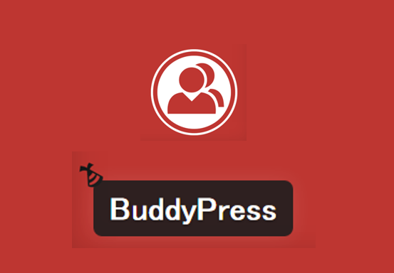 BuddyPressを使った本格的SNSサイト構築方法を徹底解説